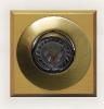 4530/3657 Polo Avellana Miel G99 Bronce Ingles