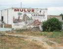 Muluz